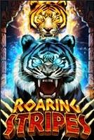 roaring stripes สล็อต