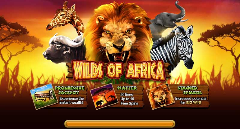 wilds of africa live22 สล็อตออนไลน์
